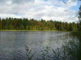 Аренда коттеджей в Финляндии, рыбалка в Финляндии.